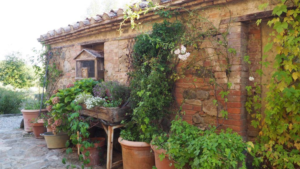 Follonico building with plants in pots