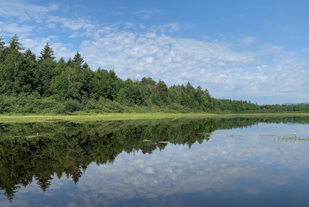 Second Roach Pond near Greenville Maine reflection of the clouds in the water