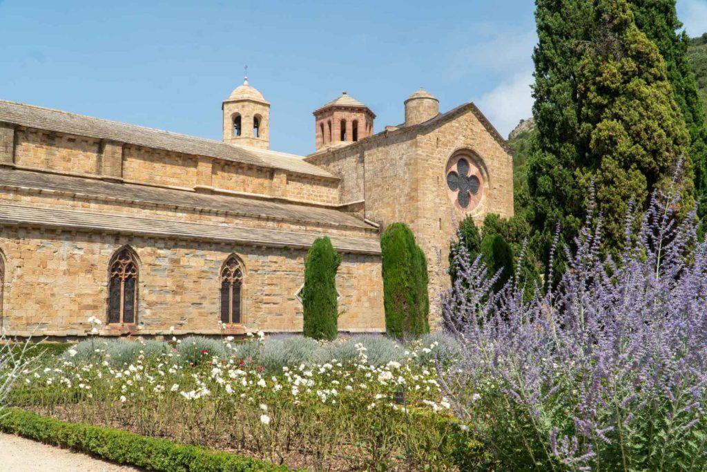 Abbeye de Fontfroide lavender garden