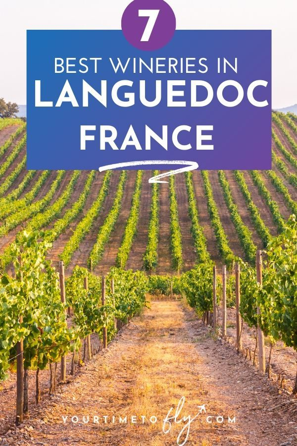 7 Best wineries in Languedoc France