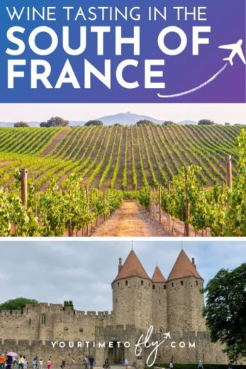 Wine tasting in the south of France