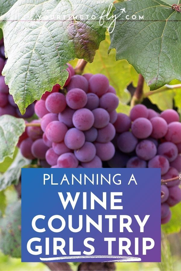 Planning a wine country girls trip with grapes