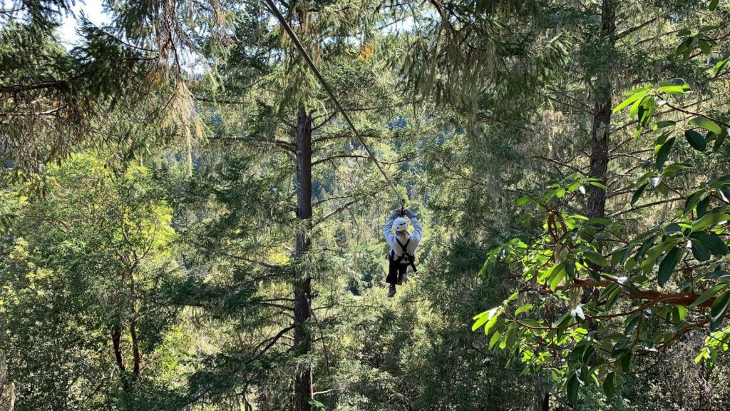 Ziplining with Sonoma Canopy tours in the Redwoods