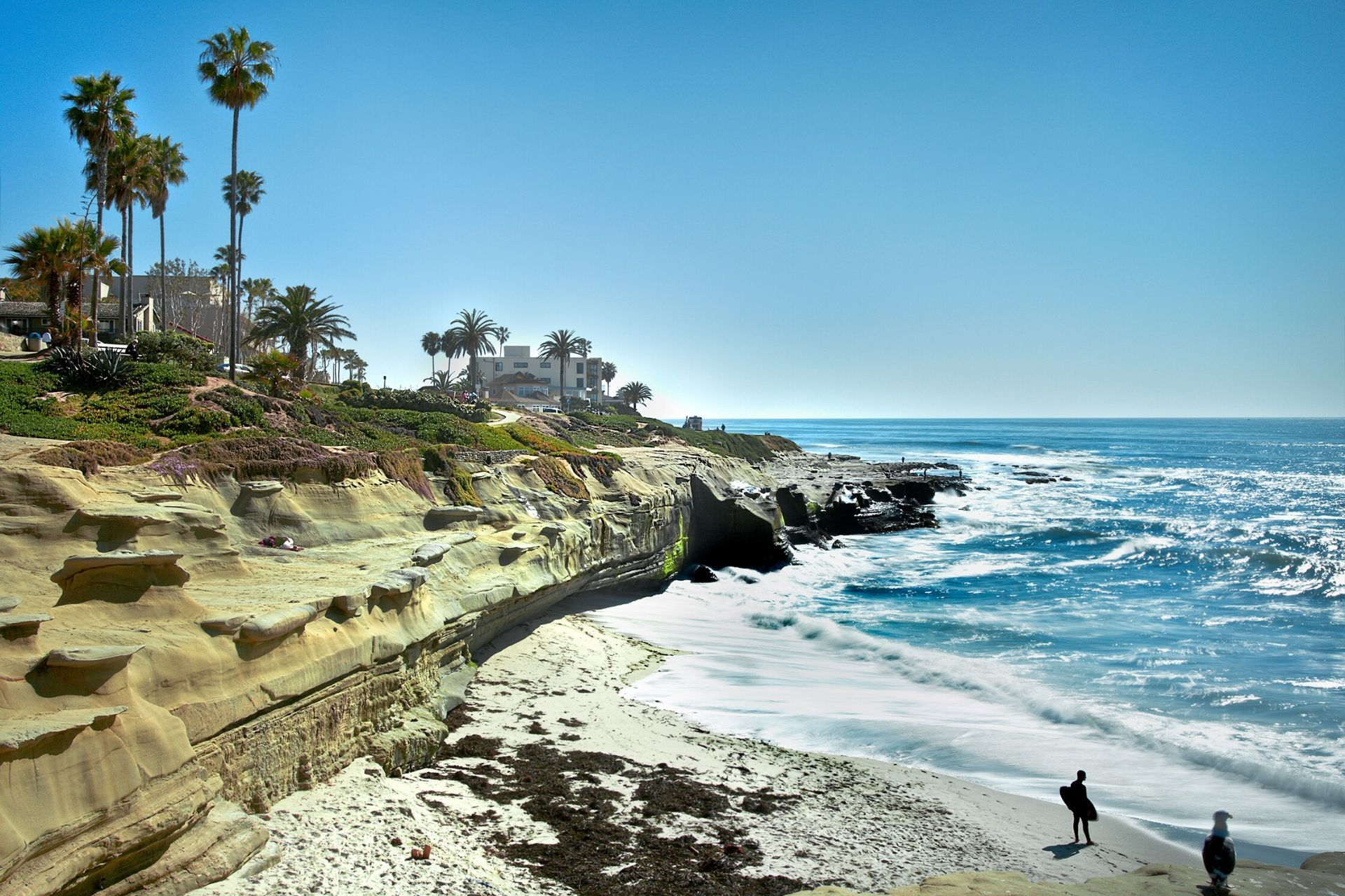 How to Turn a San Diego College Tour into a Mini Vacation