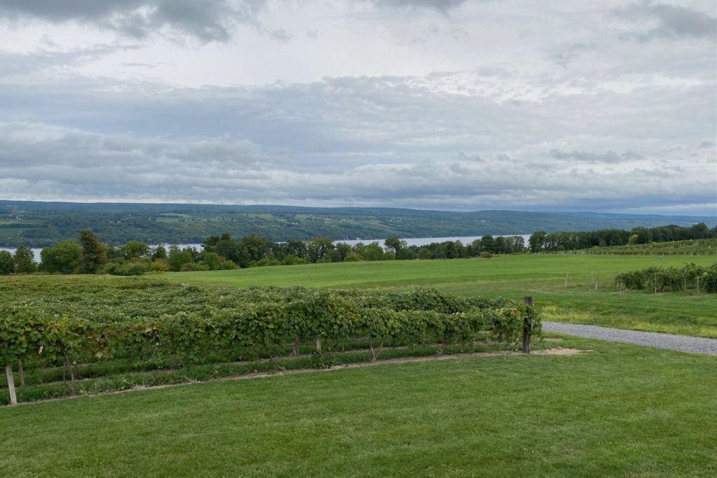 Vineyards and lake view at Glenora Wine Cellars