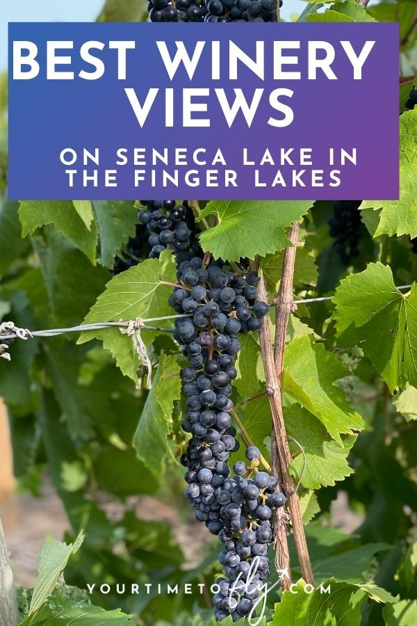 Best winery views on Seneca Lake in the Finger Lakes