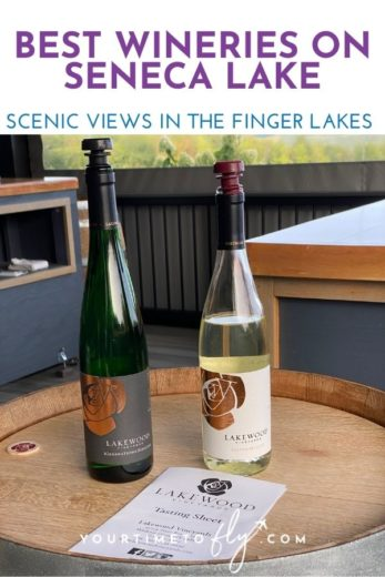 Best wineries on Seneca Lake scenic views in the Finger Lakes