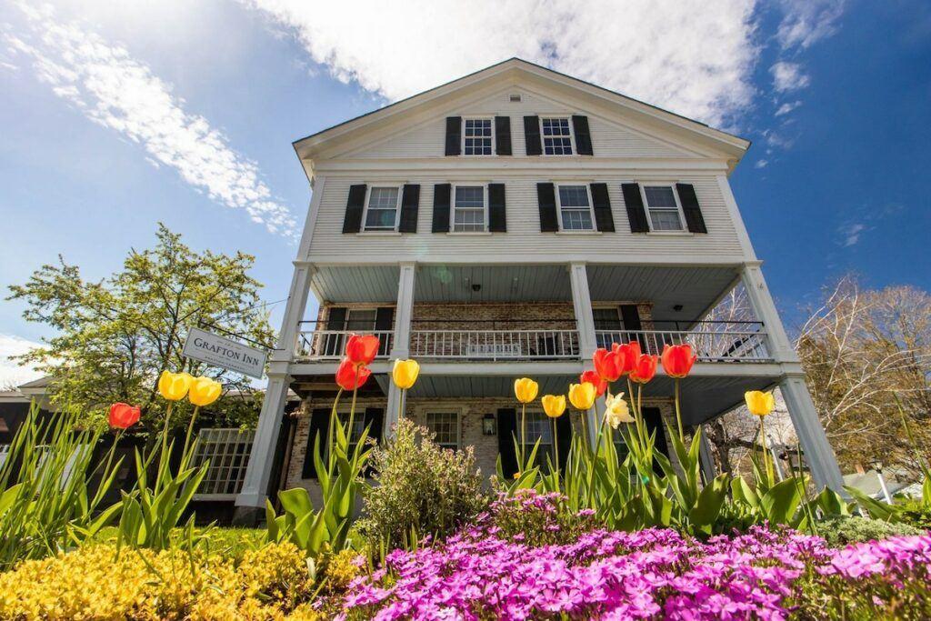Grafton Inn with spring tulips