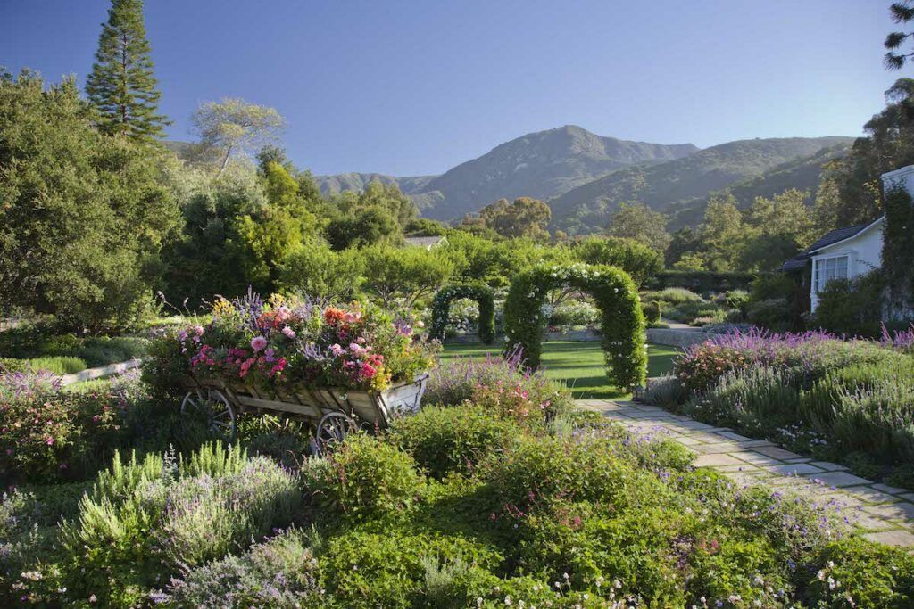 Wedding lawn with flowers and green arches with mountains in the background at San Ysidro Ranch