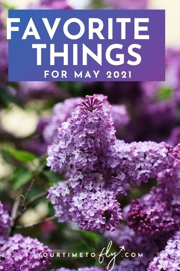 Favorite things May 2021 Lilacs