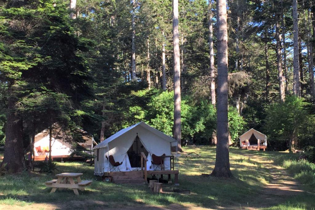 Glamping tent in Mendocino Grove