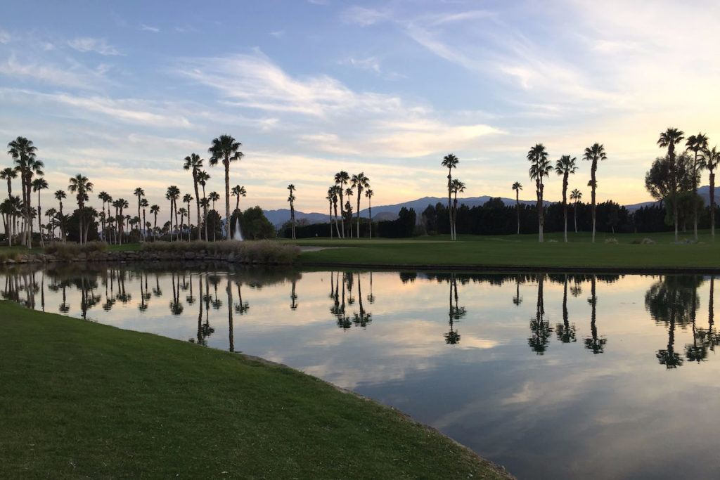 Palm trees reflecting in water in Palm Springs