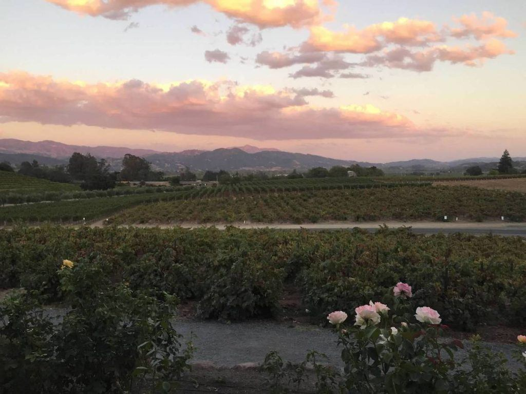 Sunset at Coppola Winery | Photo by Kristine Dworkin